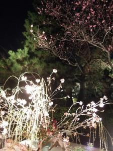 2013 京都 花灯路