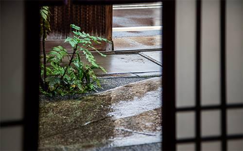 雨の日のパスカルペニョでの撮影