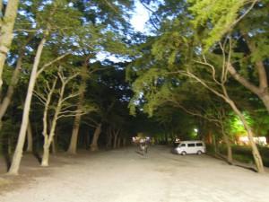 世界遺産に登録された下鴨神社(賀茂御祖神社)