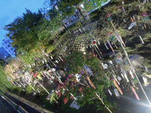 2014 京の七夕 in堀川