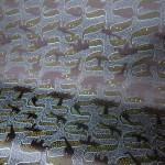 深紫経 全正絹 西陣織 金襴 アフリカ紋様