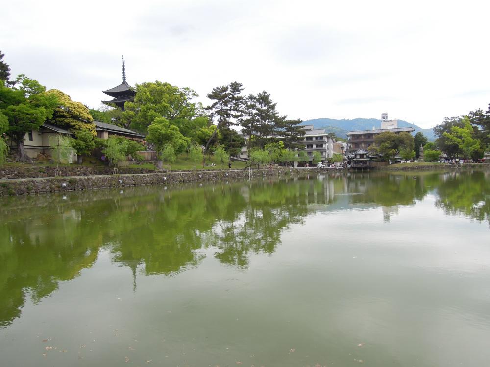 奈良 猿沢の池