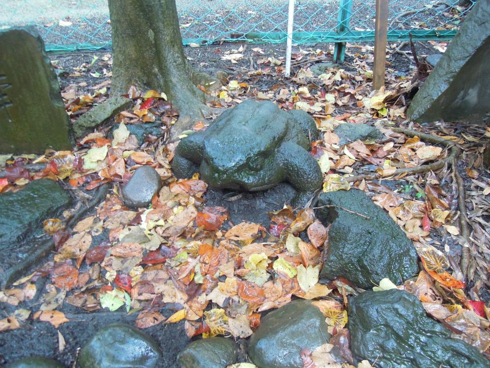 芝の宝珠院 三すくみ 蛙